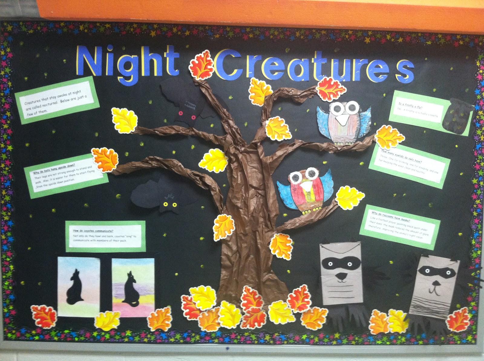 Young Amp Lively Kindergarten Night Creatures